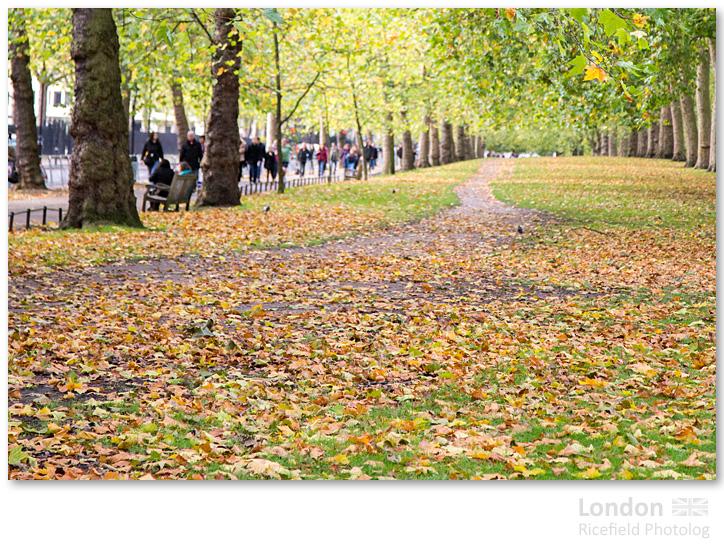 LONDON St James Park
